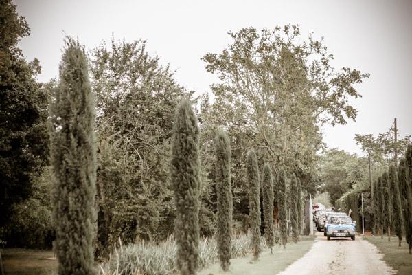 Jean Coubard-Photographe-Toulouse-Voiture des mariés dans l'allée de cyprès du Miroir des Lys dans une Citroën DS